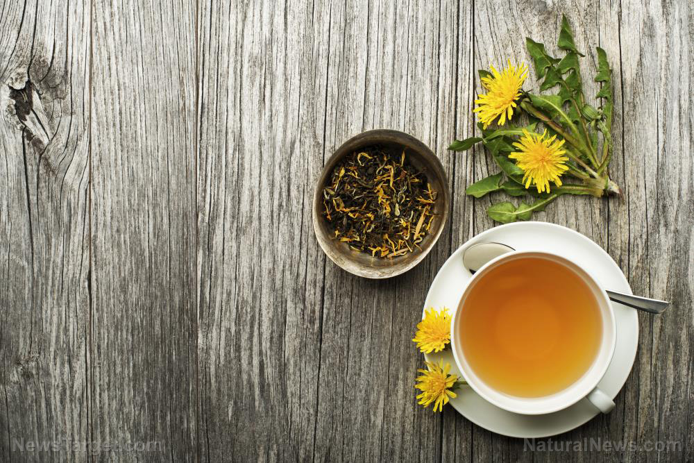 Image: Forager favorites: How to make dandelion tea, salad and jelly