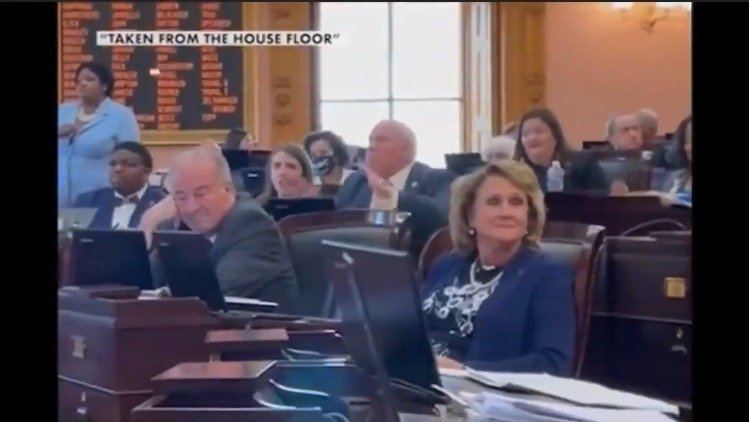 WHITE RAGE: Ohio Democrat Pounds Fists on Desk, Screams as GOP Lawmaker Proposes Bill Banning Biological Males From Female Sports (VIDEO)
