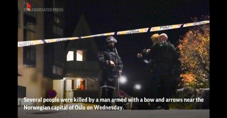 At Least 5 Dead After Bow and Arrow Rampage in Norway – Assailant Arrested, Terror Probe Launched